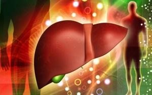tổng quan về bệnh viêm gan c